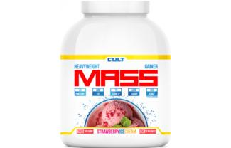 100% Pure Mass Gainer