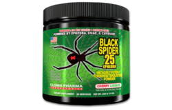 Предтрен Black Spider Powder