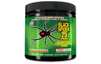 Предтрен Black Spider Powder