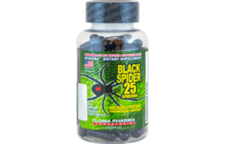 Black spider 25 ECA